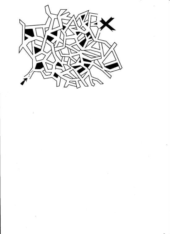 лабиринты 021