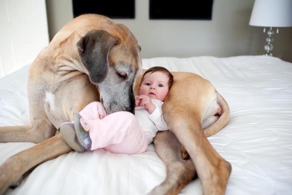 животное и малыш